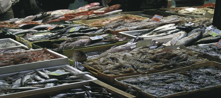 pesce vendita